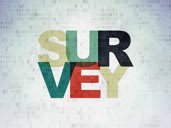 Service Management Surveys to establish levels of IT service